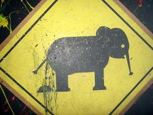 elephantpoop